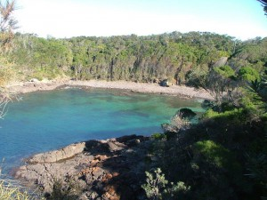 Bass Point - Bushrangers Bay